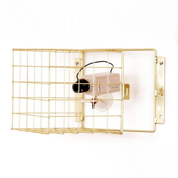 Hinged Camera Guards - 50mm mesh
