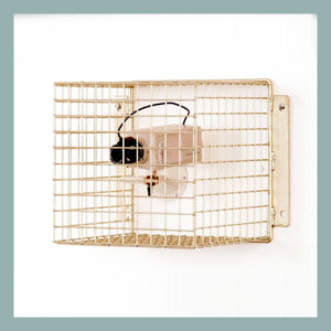 Wire Mesh Camera Guard 25mm mesh
