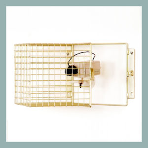 Wire Mesh Hinged Camera Guard 25mm mesh