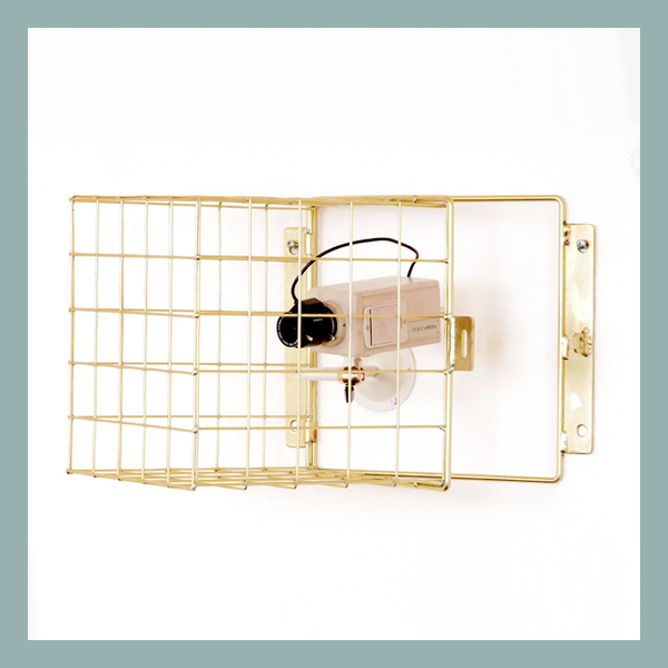 Wire Mesh Hinged Camera Guard 50mm mesh